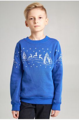 Рождественский свитшот для мальчика Олени, электрик