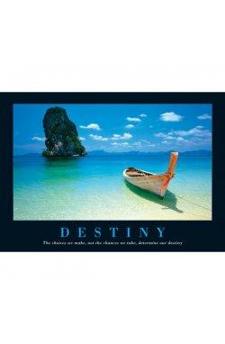 "Постер ""Destiny"" 61 x 91,5 cм - wws-7114"