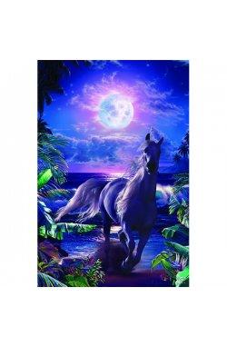 "Постер ""Lassen-A Midnight Stroll"" 61 x 91,5 см - wws-7838"